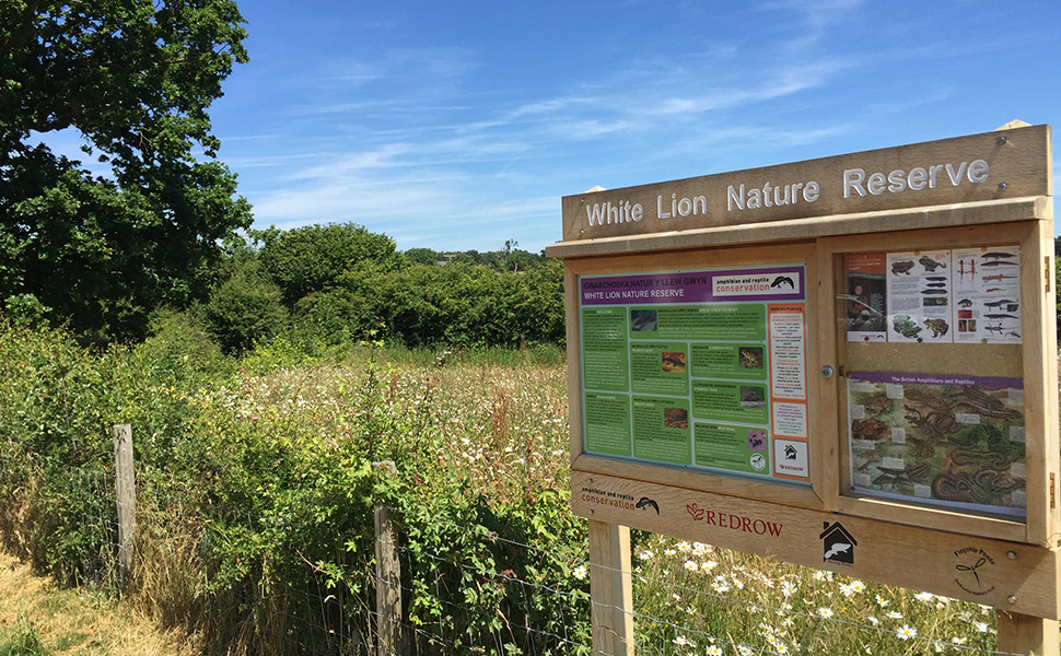 Nature reserve on housing development wins biodiversity award